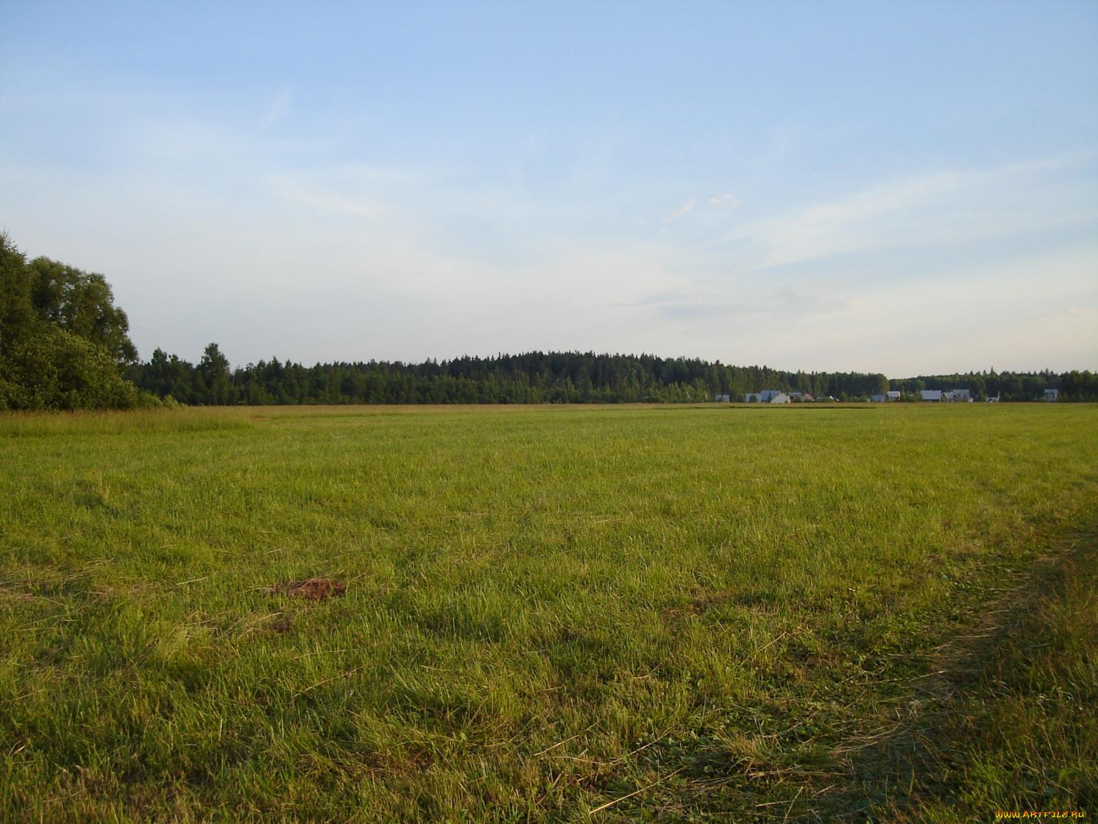 Видели общая совместная собственность членов крестьянского фермерского хозяйства лилового